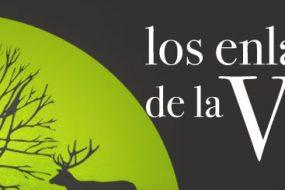 LOS ENLACES DE LA VIDA EN ALGECIRAS