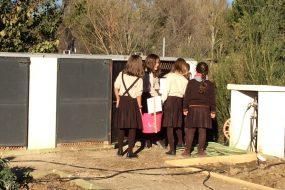 Puesta en marcha de la Compostera del huerto escolar del CIG