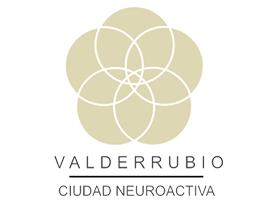 Ciudad Neuroactiva