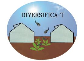 DIVERSIFICA-T