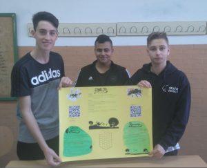 Los alumnos muestran su panel informativo sobre las abejas y avispas solitarias