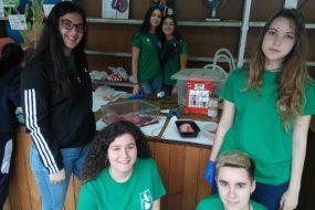 Preparación y participación en XIII Jornada de Ciencia en la calle de Algeciras