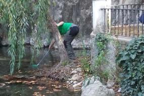 Evaluación inicial del río Cabra
