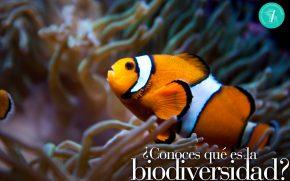 Exposición 'Biodiversidad. Los enlaces de la vida'