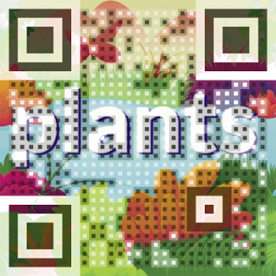 Arloon Plants