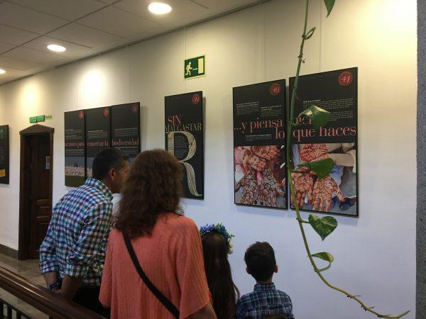 Primeros asistentes a la exposición Biodiversidad en El Padul